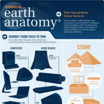 The Story Of Thin Stone Veneer Infographic
