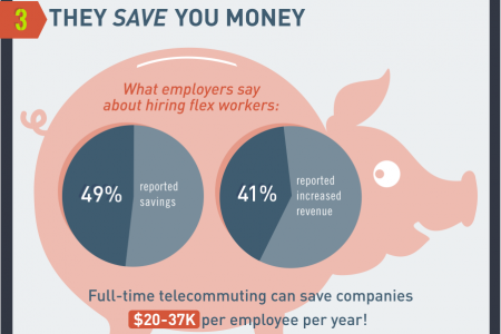 The Top 5 Reasons Why Flexible Workers Rock Infographic