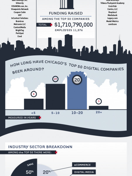 The Top 50: Breaking Down Chicago's Top Digital Companies Infographic