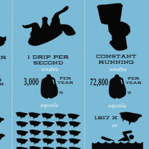 The True Cost of a Leak Infographic