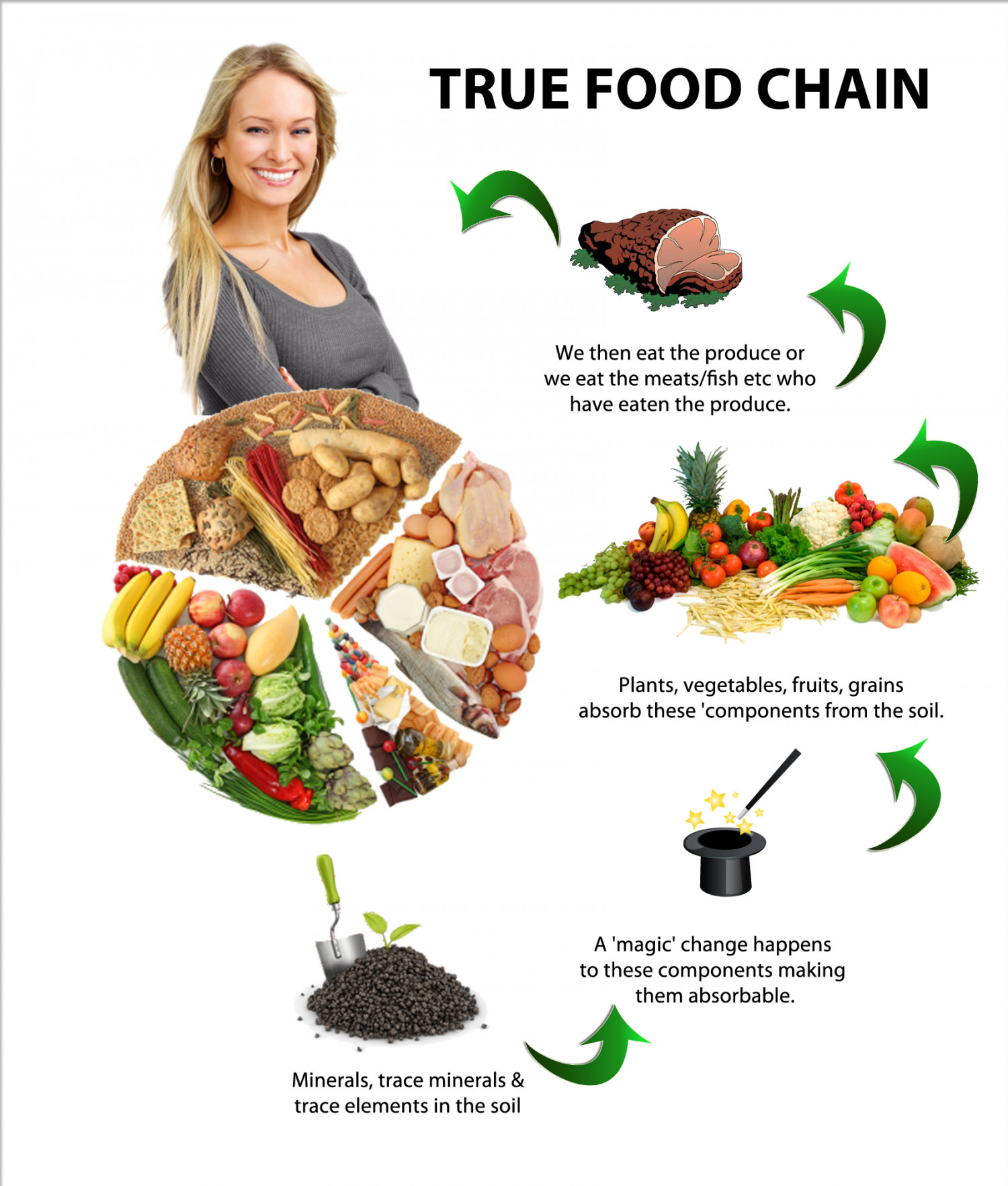 The True Food Chain Infographic