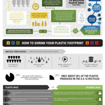 The Truth About Plastic And it's Impact on Our Planet Infographic