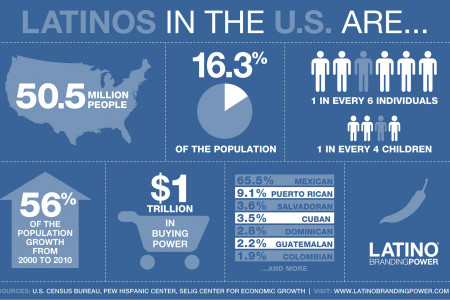 The U.S. Hispanic Market  Infographic