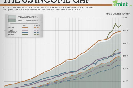 The US Income Gap  Infographic