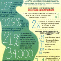 The U.S. Maternal Healthcare Crisis Infographic