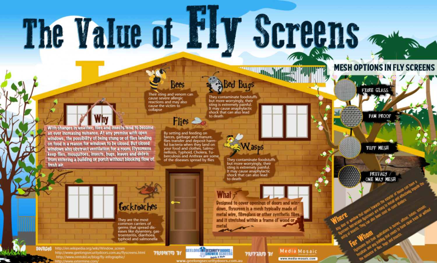 The value of fly screen Infographic Infographic
