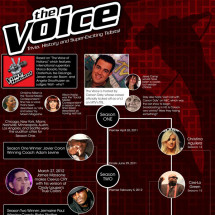 The Voice - Trivia, History and Super-Exciting Tidbits Infographic