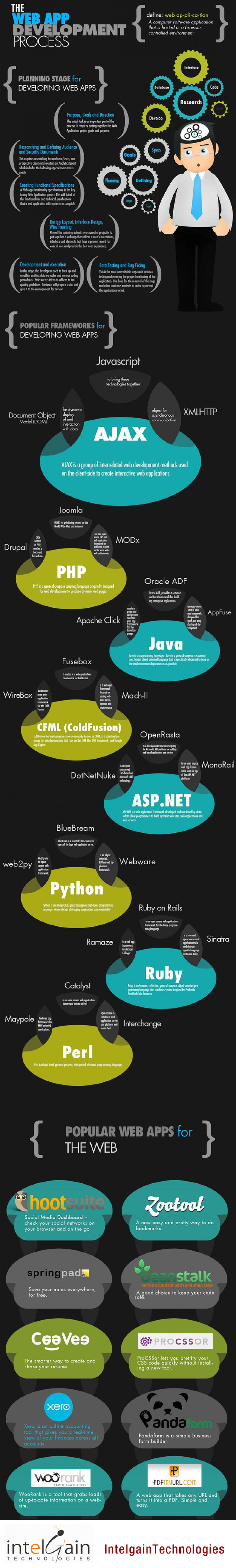The Web Application Development Process Infographic