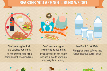 The Weight Loss Success Infographic