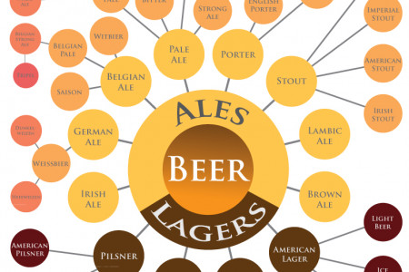 The Wide World of Beer Infographic