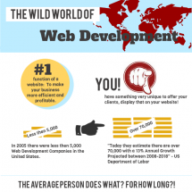 The Wild World of Web Development Infographic