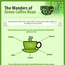 The Wonders Of Green Coffee Bean Infographic