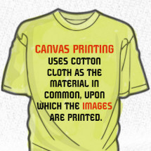 The World Of Canvas Prints Infographic