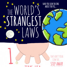 The World's Strangest Laws Infographic