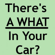 There's a what in your car?  Infographic