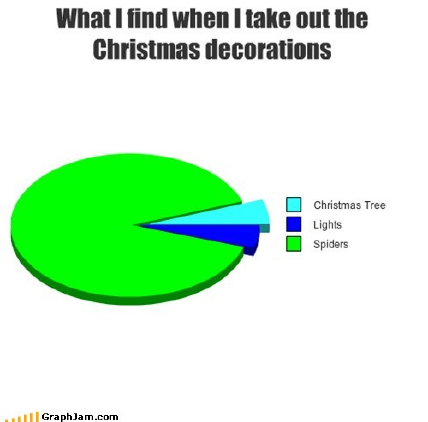 Things I find when I take out the Christmas Decorations Infographic