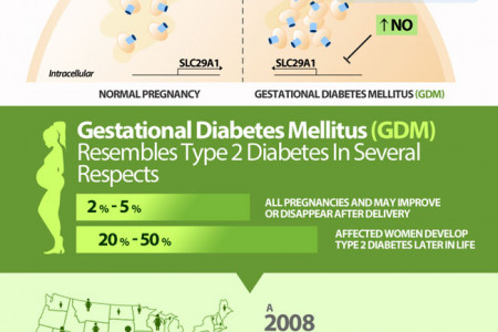 Things To Know About Diabetes Infographic