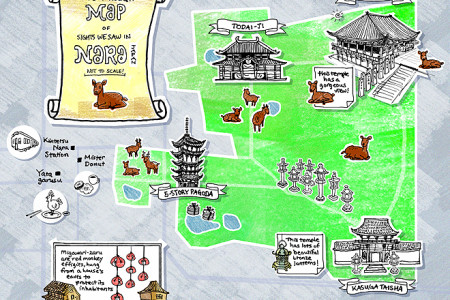 things we saw: nara Infographic