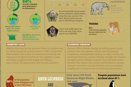 Threats to Biodiversity Infographic