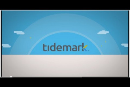Tidmark Overview Infographic