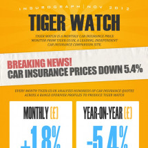 Tiger Watch Insurograph Infographic