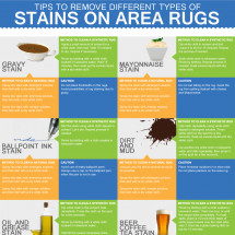 Tips To Remove Different Types of Stains on Area Rugs Infographic