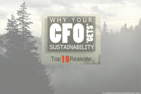 Top 10 Reasons Your CFO 'Gets' Sustainability Infographic