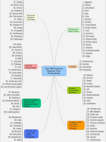 Top 100 Foods to Enhance Productivity Infographic