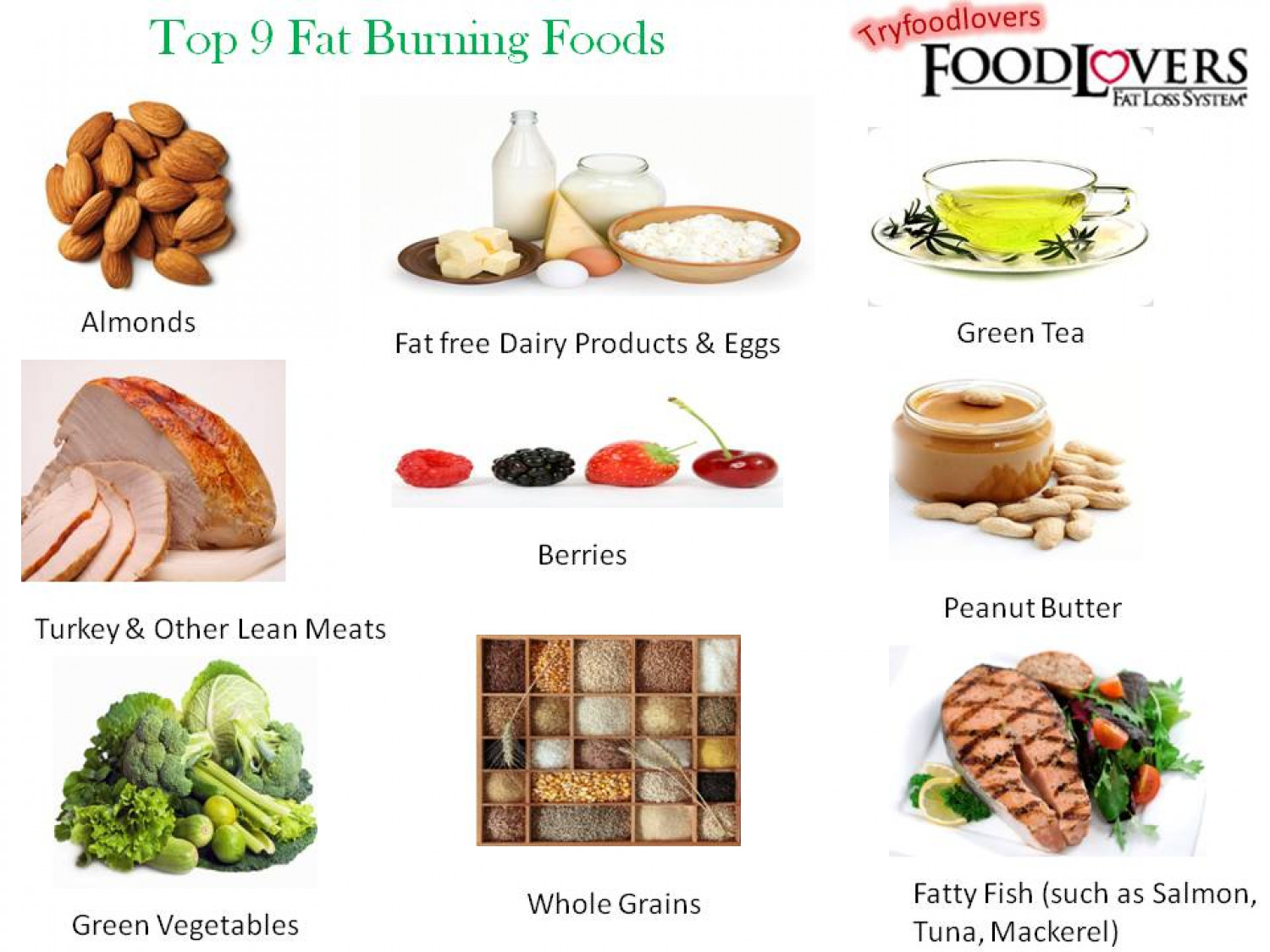 Top 9 Fat Burning Foods Infographic
