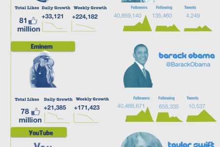 Top Facebook Pages And Twitter Users Infographic