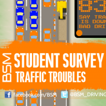 Traffic Troubles Infographic