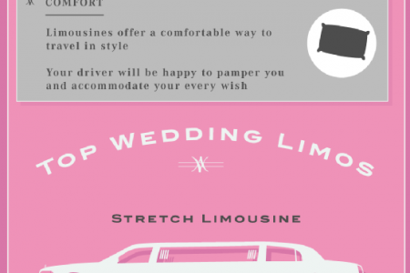 Travel In Style: Choosing Wedding Limos Infographic