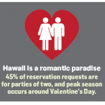 Travel Trends: Hawaii Is For Lovers Infographic