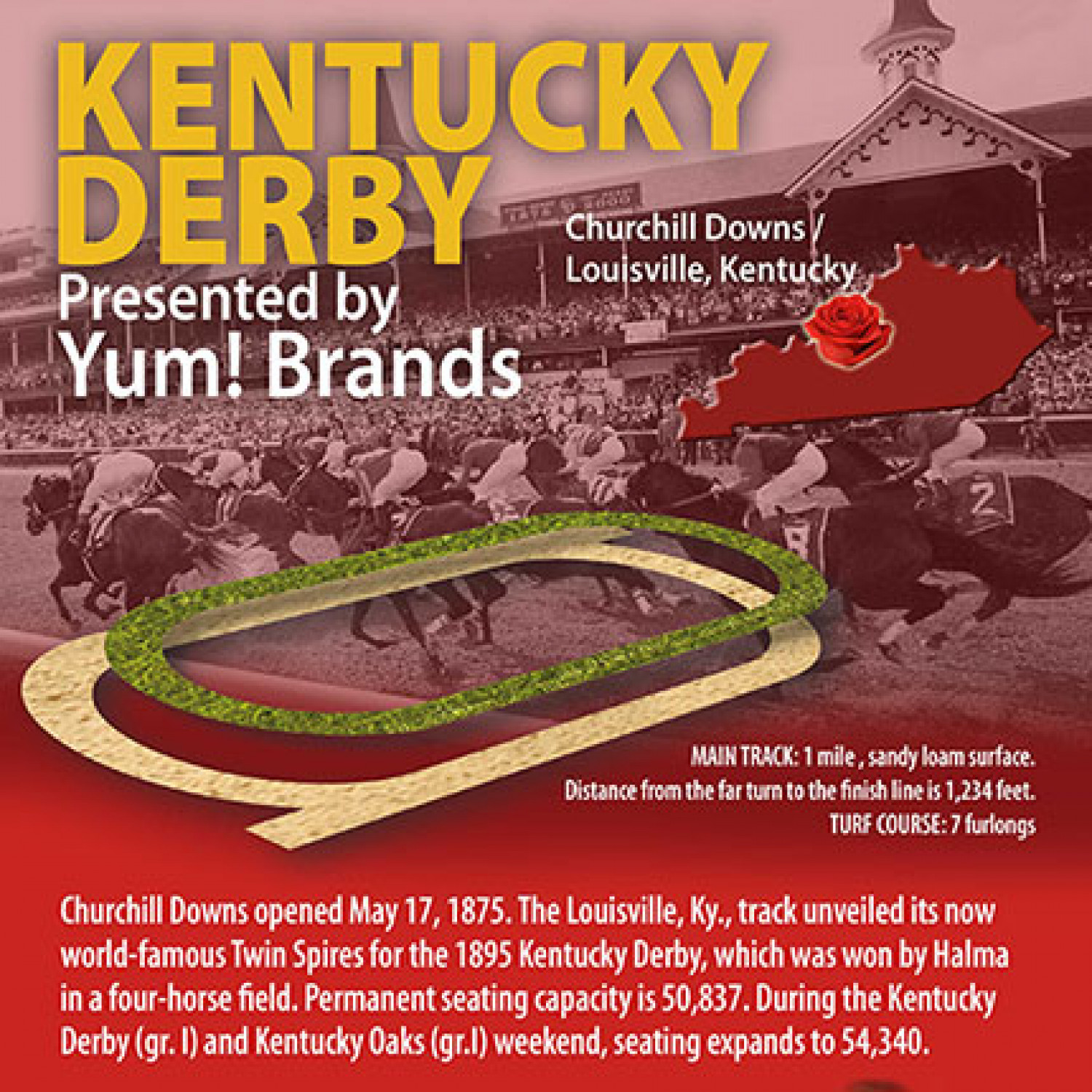 Kentucky Derby Infographic