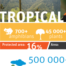 Tropical Andes Infographic