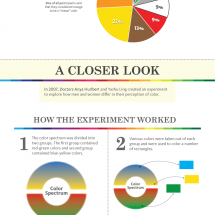 True Colors: Color Preferences By Gender Infographic