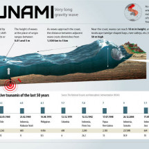 Tsunami: Very Long Gravity Wave Infographic