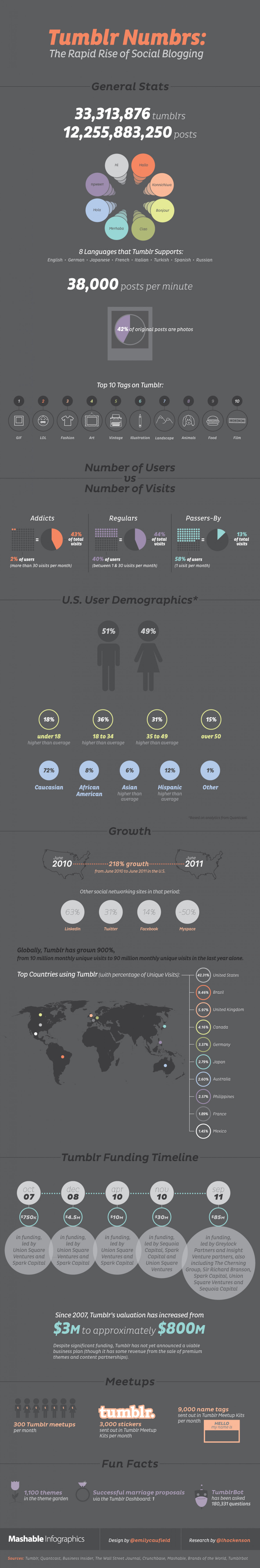 Tumblr by the Numbers Infographic