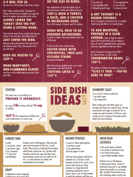 Turkey Day Ideas Infographic
