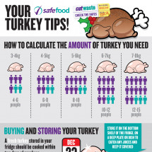 Turkey Tips for Christmas Cookin' Infographic