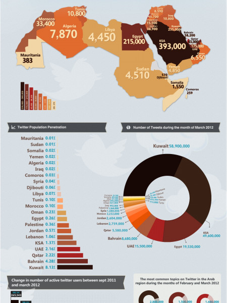 Twitter Active Users in Arab World - English Infographic