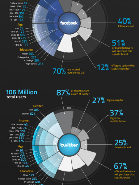 Twitter vs. Facebook Demographics Infographic