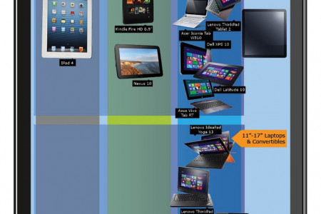 Two Months of Device Diversity (Infographic) Infographic