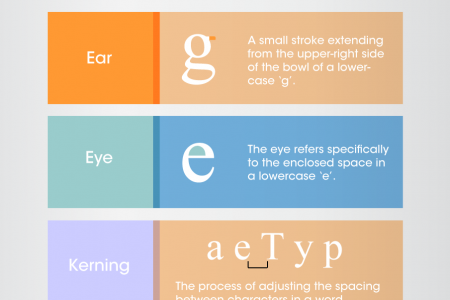 Typography And Font Deconstruction Infographic