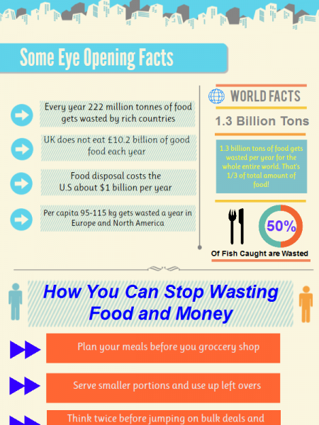 Ugly Truth on Food Waste Infographic