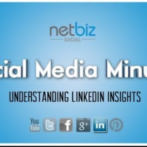 Understanding LinkedIn Insights Infographic
