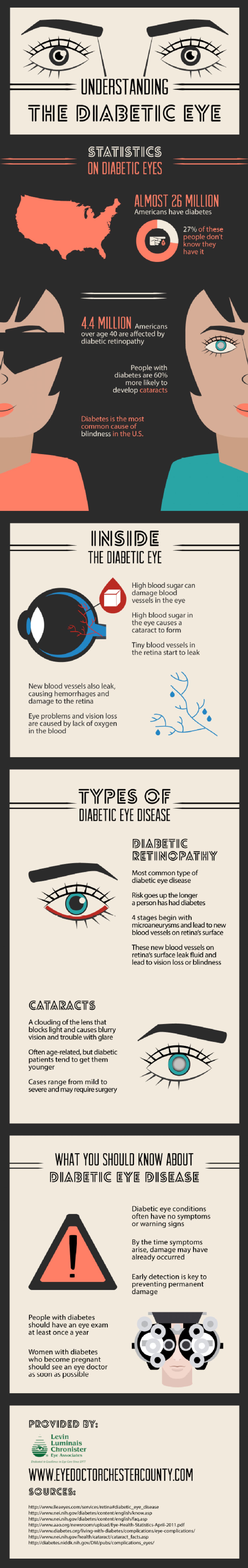 Understanding the Diabetic Eye Infographic