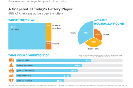 Understanding the dynamics of lottery players Infographic