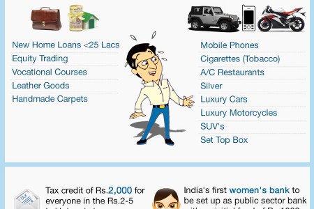 Union Budget 2013 | Infographic Infographic
