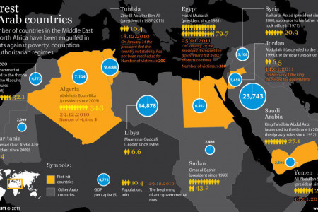 Unrest in Arab Countries Infographic